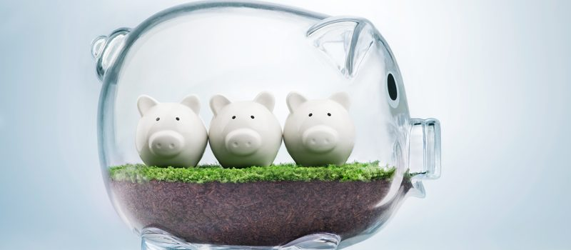 Budget planning and allocating money concept with piggy bank